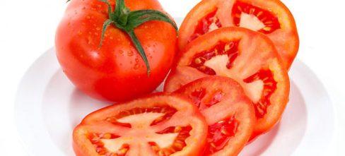 tomate-1200x545_c