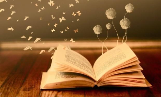 como-ler-mais-livros-em-2015-660x400.jpg